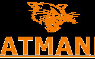 Минитрактора Catmann (Катман) — модели их характеристики, видео