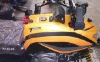Снегоход Динго (Dingo): 150, 250, 150, T150, T125, T110, Ирбис (Irbis), цена, технические характеристики, цена, отзывы