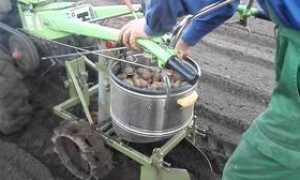 Картофелекопатель для мотоблока: изготовление и виды