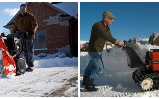Колесные и гусеничные снегоуборщики — преимущества и недостатки