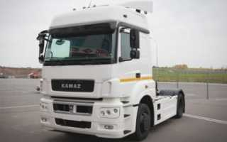 КамАЗ-5490 с двигателем Мерседес (Mercedes Benz): цена, мерседесовским, грузовой, отзывы, мотор