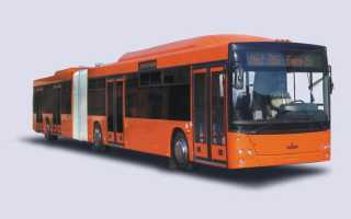 Автобус МАЗ-206: технические характеристики, цена, двигатель, ремонт, отзывы
