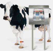 Техника для животноводства