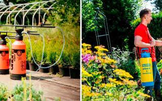 Садовые опрыскиватели Жук: виды, особенности, характеристики