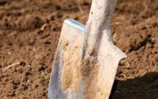 Благодаря технике Скаут даже самые сложные земельные работы будут выполняться качественно, легко и оперативно