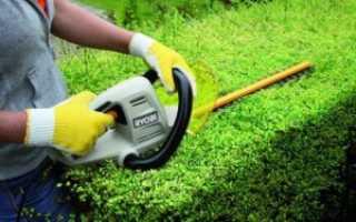 Кусторезы: садовая техника от ведущих производителей и их характеристики