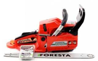 Бензопила Фореста (Foresta): цена, отзывы владельцев, описание, технические характеристики