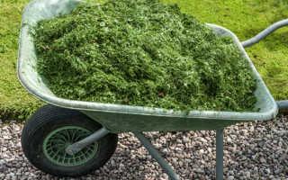 Нужно ли мульчирование травы?